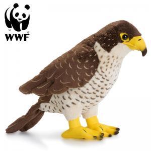 Falk - WWF (Världsnaturfonden)