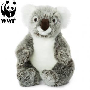 Koala - WWF (Världsnaturfonden)