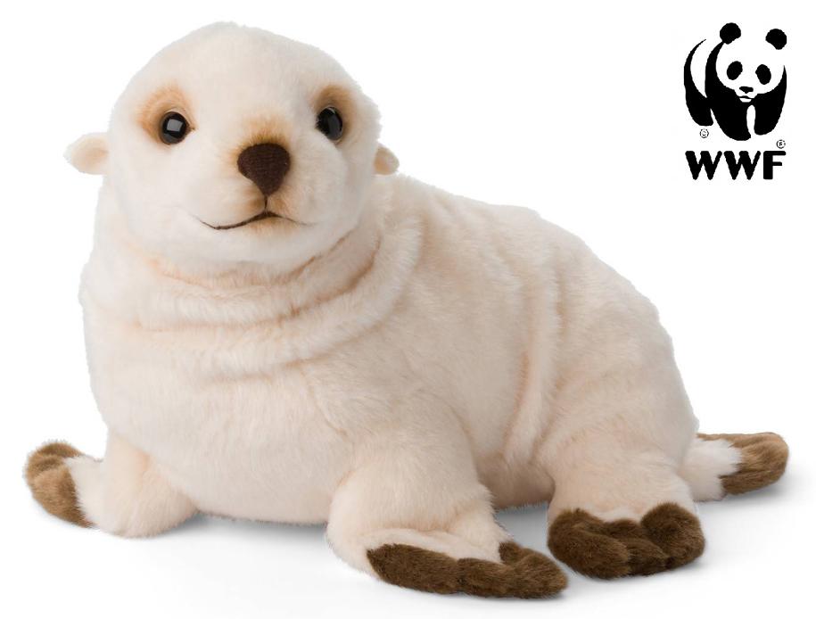 Antarktisk pälssäl - WWF