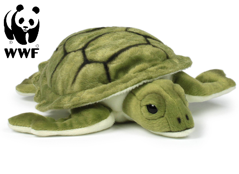 Sköldpadda - WWF (Världsnaturfonden)