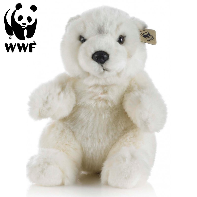 Isbjörn - WWF (Världsnaturfonden)